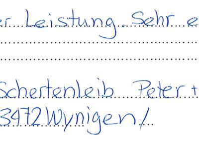 Referenz Sitzplatzüberdachung Karl Blaser AG